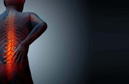 Kemik Erimesi Tedavisi Bitkisel Çözüm