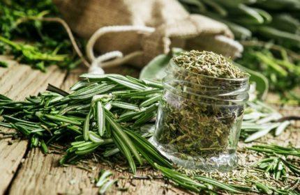 Baş Ağrısı İçin Bitkisel İlaç Tedavisi Nedir?