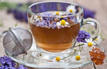 Lavanta Çayının Faydaları Nelerdir?