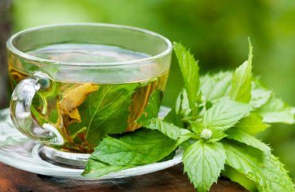 Isırgan Otu Çayının Faydaları Nelerdir?