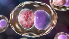 Klamidya Enfeksiyonu, Belirtileri Nelerdir?