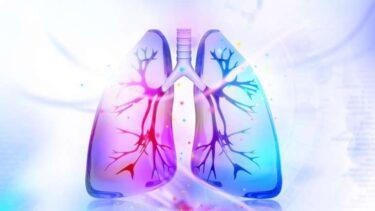 Akciğerleri Güçlendiren Yiyecekler ?